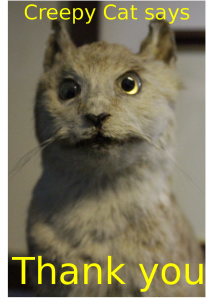 Creepy cat does not like taxidermists