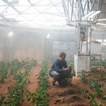 "Spud Oddity: Did The Martian really ""science the sh*t out of this""?"